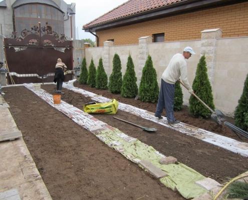 Выравнивание почвы